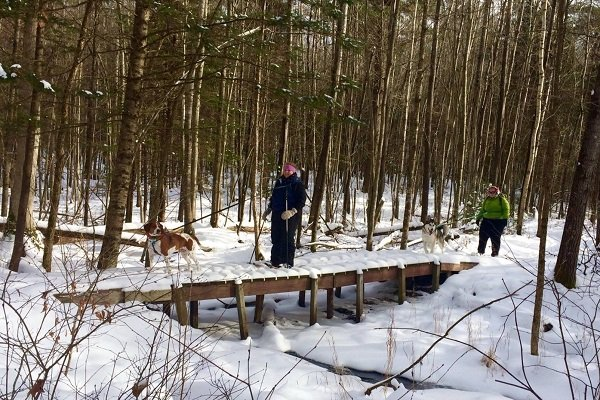 Ice Age National Scenic Trail, Ice Age Trail Alliance, First Day Hikes, Hikes in 2019