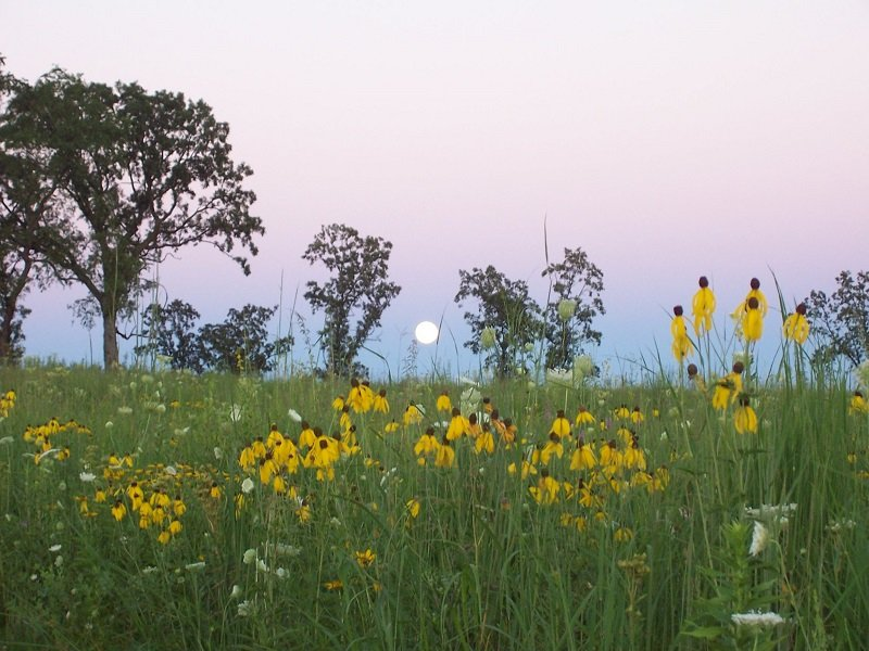 The Ice Age National Scenic Trail, the Ice Age Trail Alliance, Full Moon Hikes