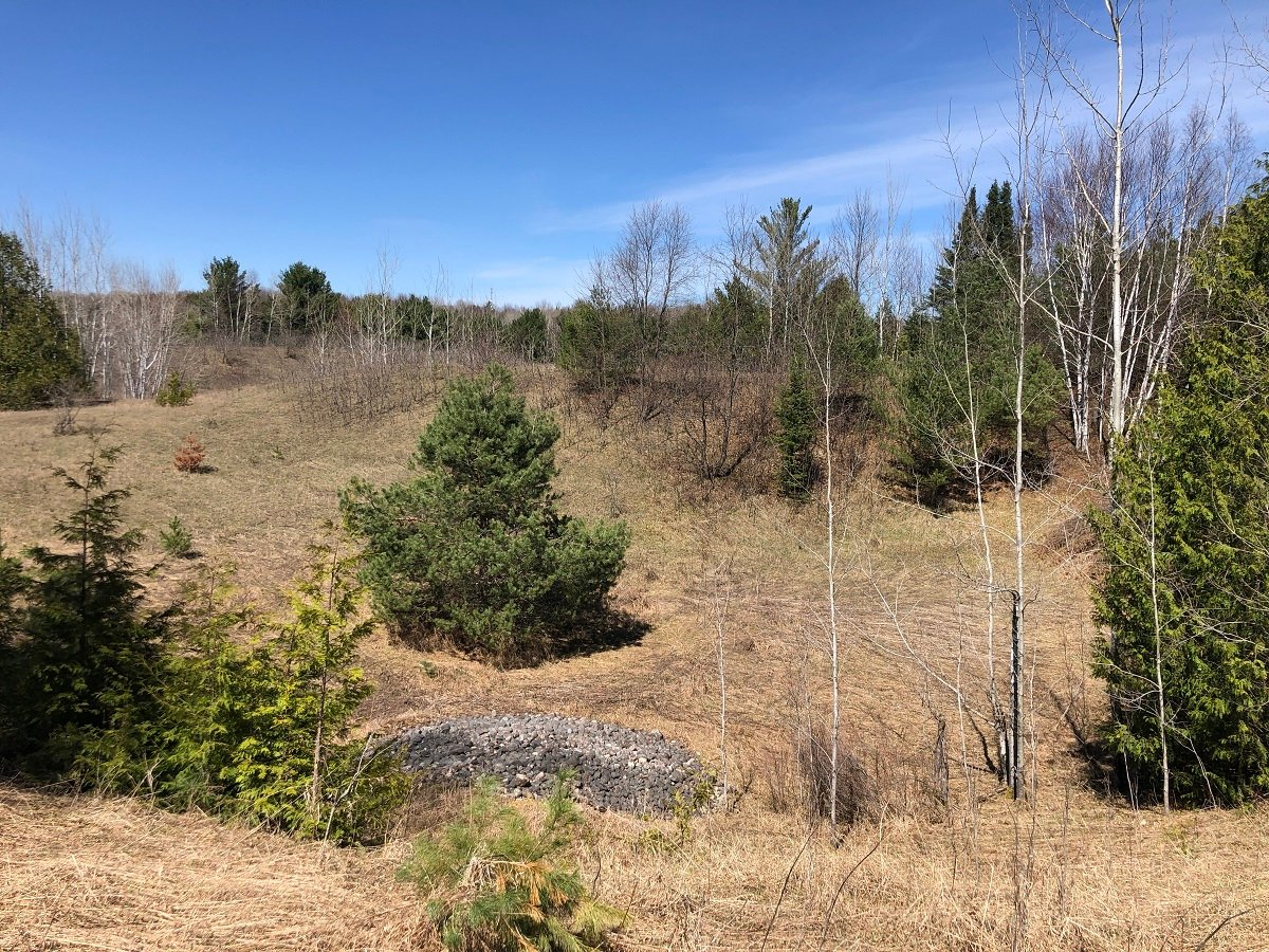 Help Protect Land in Langlade County (6)