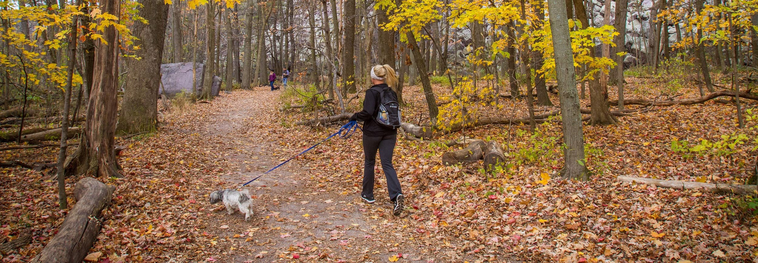 Hiking with your dog on the Ice Age Trail, Ice Age National Scenic Trail